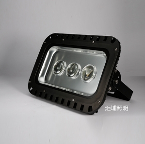 非标工程灯具
